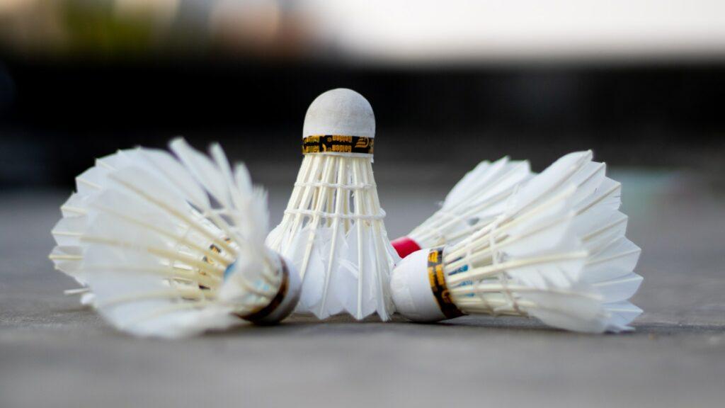 Illustration du sport d'extérieur simple à mettre en place : le badminton